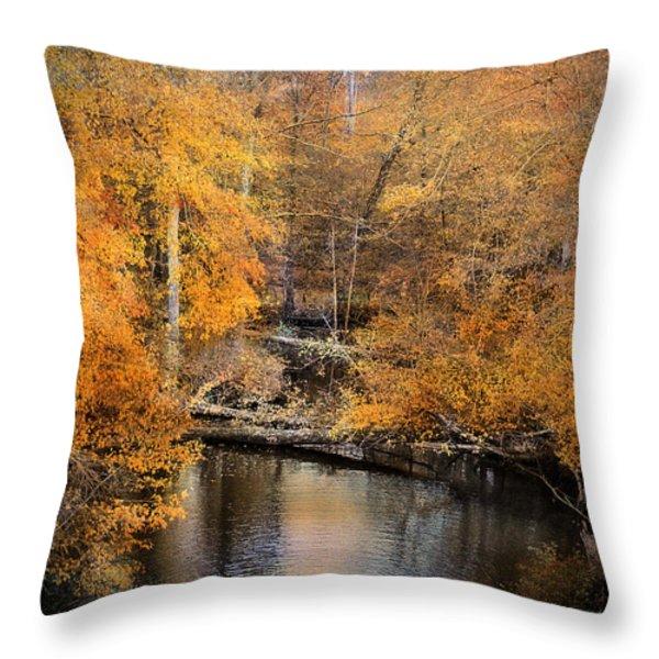 Golden Blessings Throw Pillow by Jai Johnson