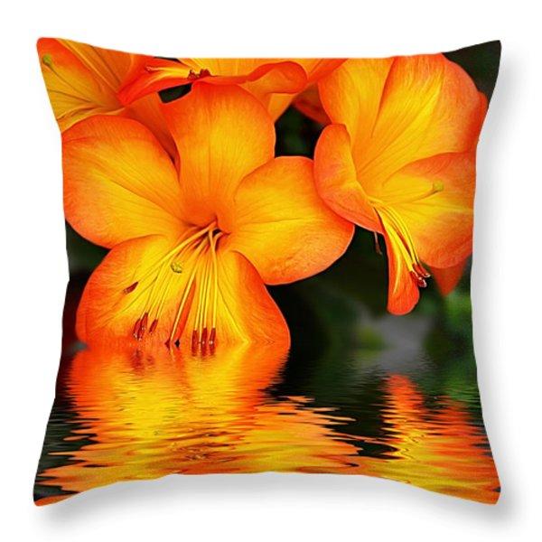 Golden Dreams Throw Pillow by Kaye Menner