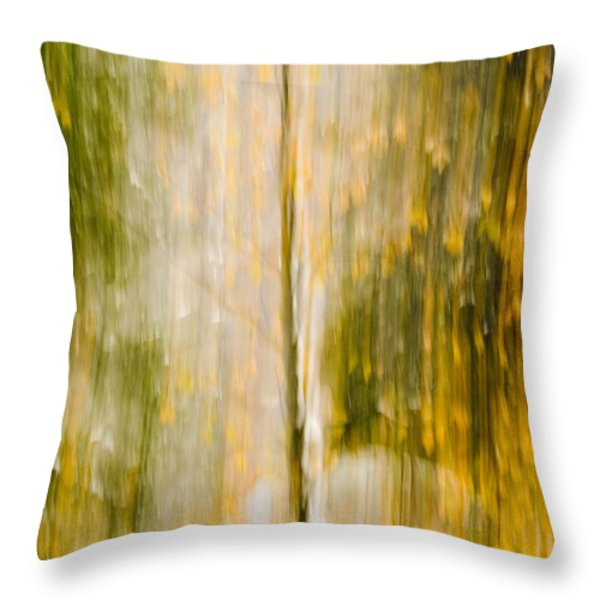 Golden Falls  Throw Pillow by Bill Gallagher
