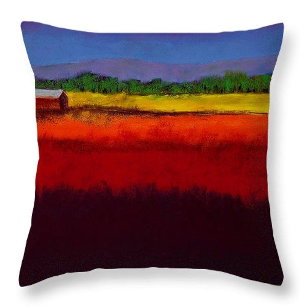 Golden Field Throw Pillow by David Patterson
