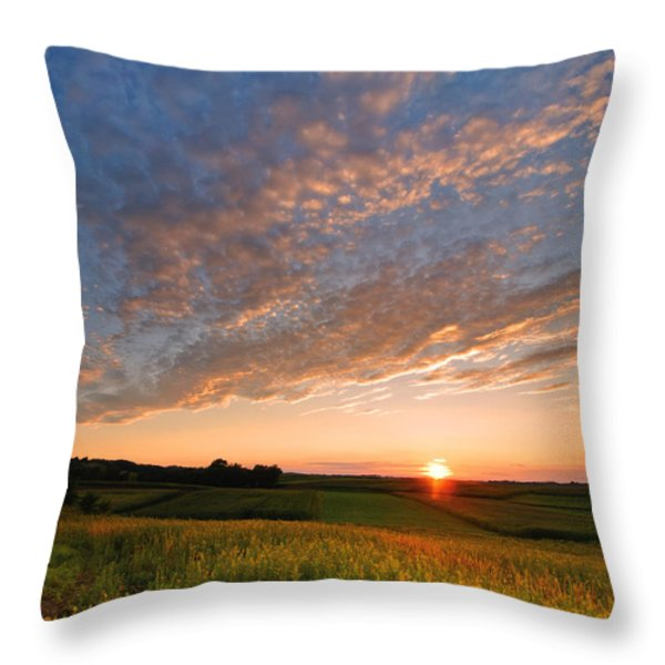 Golden Fields Throw Pillow by Davorin Mance