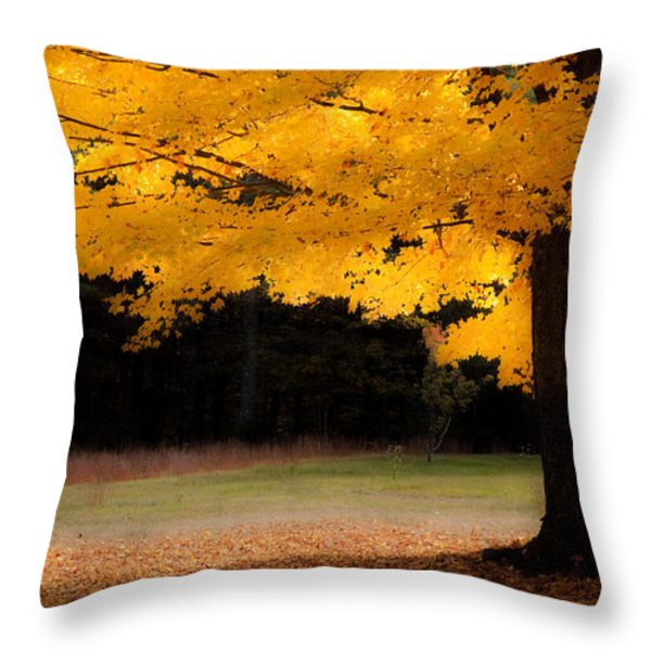 Golden Glow Of Autumn Fall Colors Throw Pillow by Jeff Folger