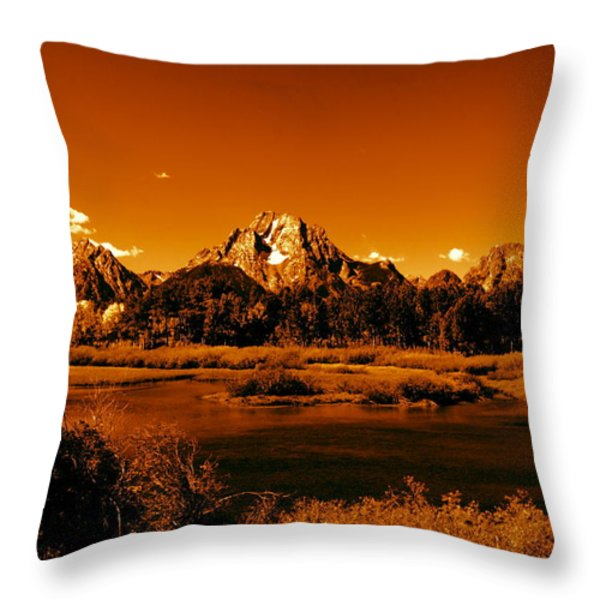 Golden Landscape Throw Pillow by Aidan Moran