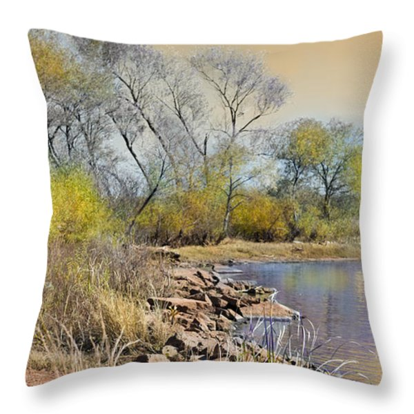 Golden Light Throw Pillow by Betty LaRue
