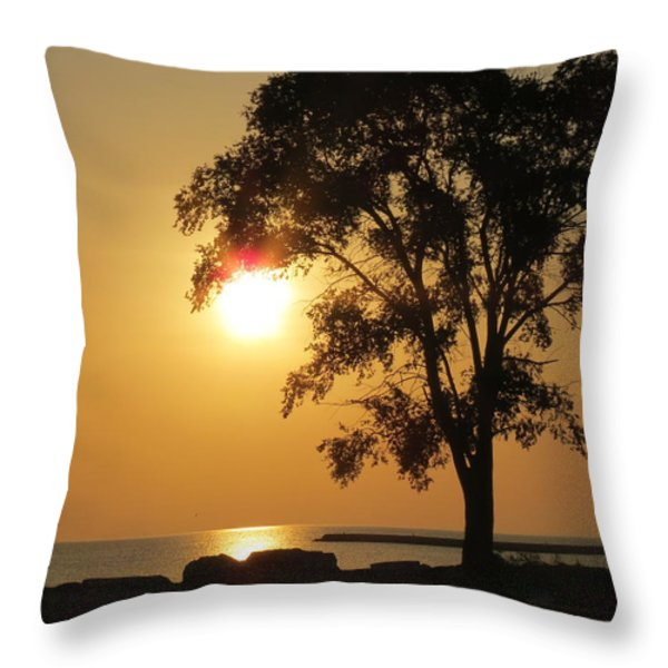 Golden Morning Throw Pillow by Kay Novy