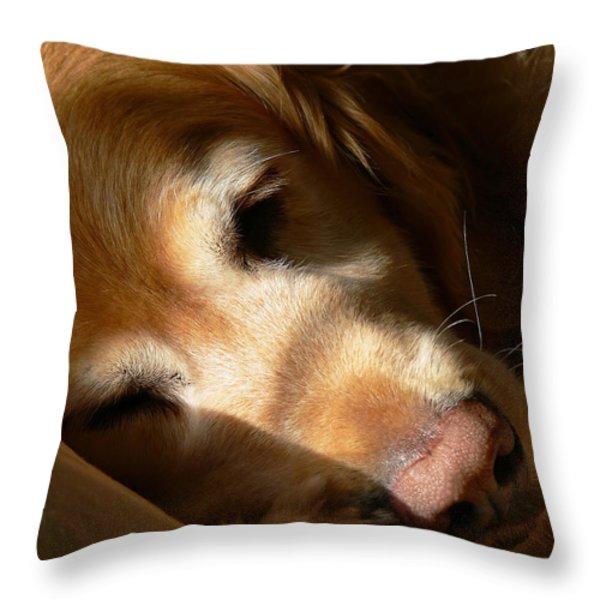 Golden Retriever Dog Quiet Time Throw Pillow by Jennie Marie Schell