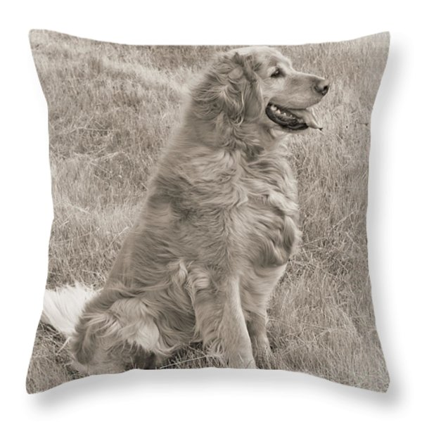 Golden Retriever Dog Sepia Throw Pillow by Jennie Marie Schell