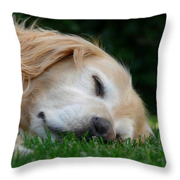 Golden Retriever Dog Sweet Dreams Throw Pillow by Jennie Marie Schell