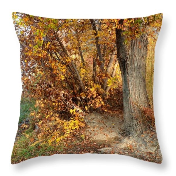 Golden Riverbank Throw Pillow by Carol Groenen