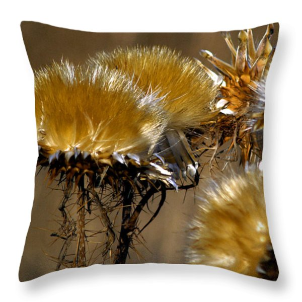 Golden Thistle Throw Pillow by Bill Gallagher