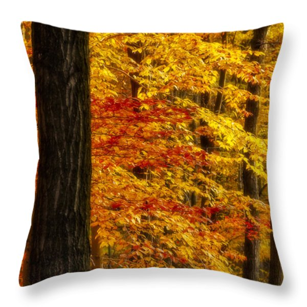Golden Trees Glowing Throw Pillow by Susan Candelario