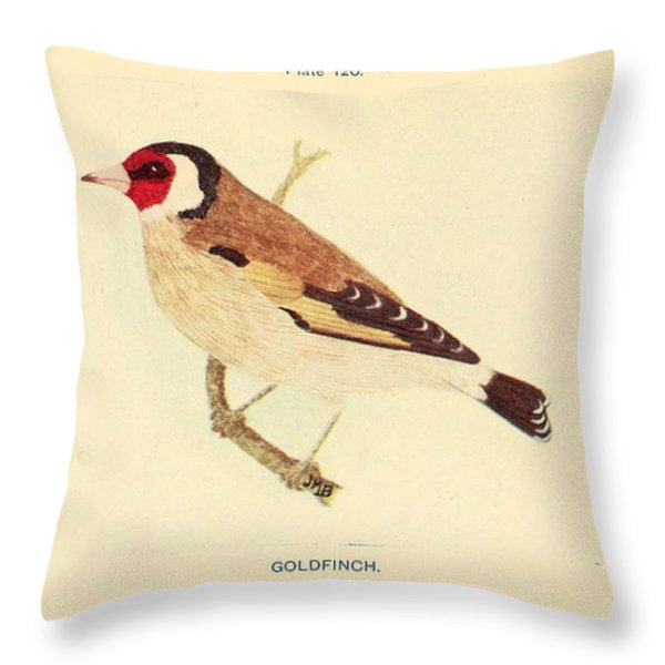 Goldfinch Throw Pillow by Philip Ralley