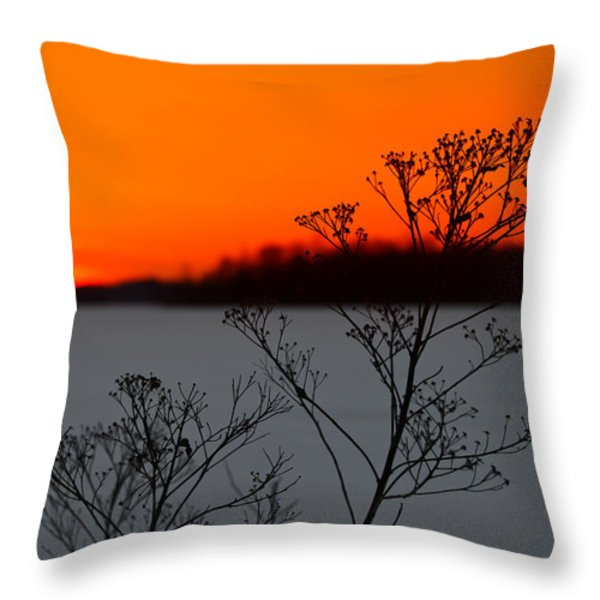 Gone is the Sun Throw Pillow by Rachel Cohen