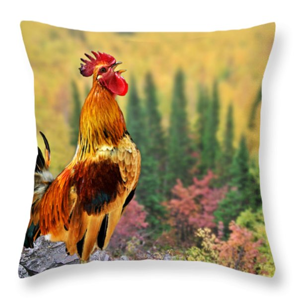Good Morning America Throw Pillow by Christine Till