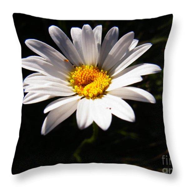 Good Morning Sunshine Throw Pillow by Agnieszka Ledwon