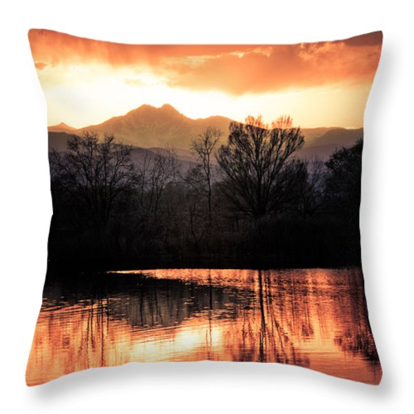 Goose On Golden Ponds 1 Throw Pillow by James BO  Insogna
