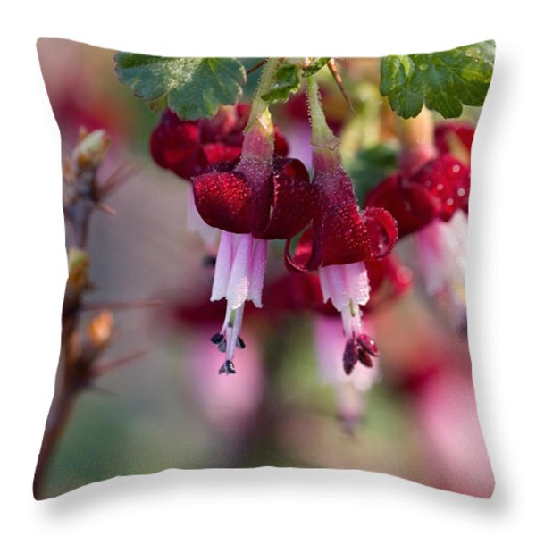 Gooseberry Flowers Throw Pillow by Peggy Collins