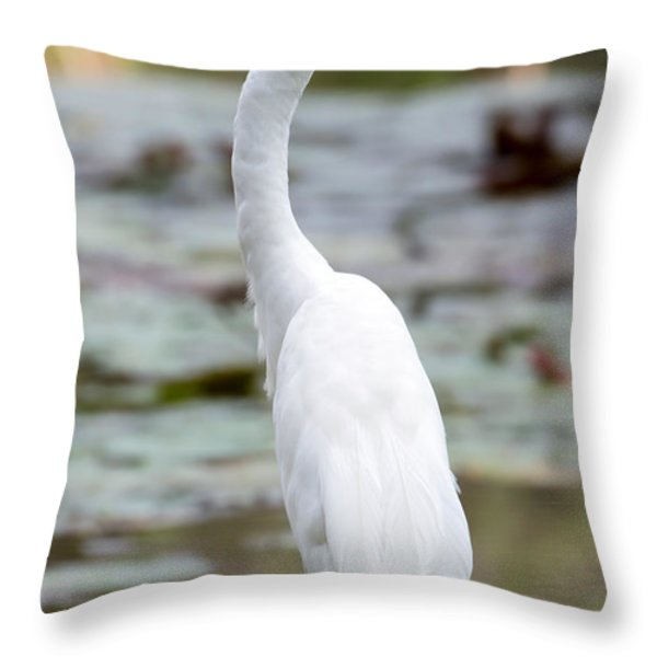 Gorgeous N Tall Great White Egret Throw Pillow by Sabrina L Ryan