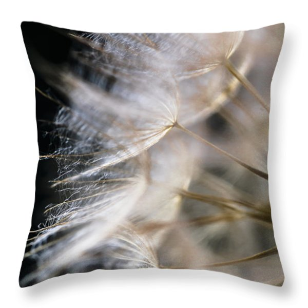 Gossamer Throw Pillow by Jan Bickerton