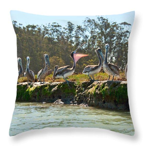 Gossip - Group Of Brown Pelican Pelecanus Occidentalis On The Elkhorn Slough. Throw Pillow by Jamie Pham