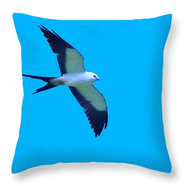 Grace And Majesty Throw Pillow by Tony Beck