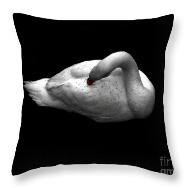 Grace Throw Pillow by Dale   Ford