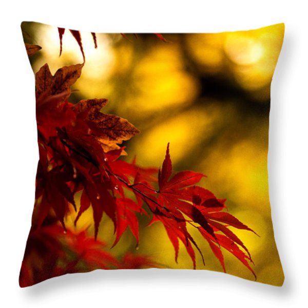 Graceful Leaves Throw Pillow by Mike Reid