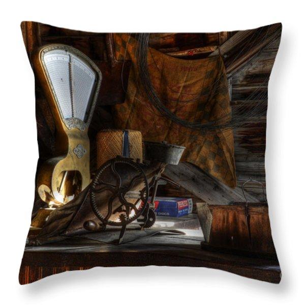 Grain Elevator Throw Pillow by Bob Christopher
