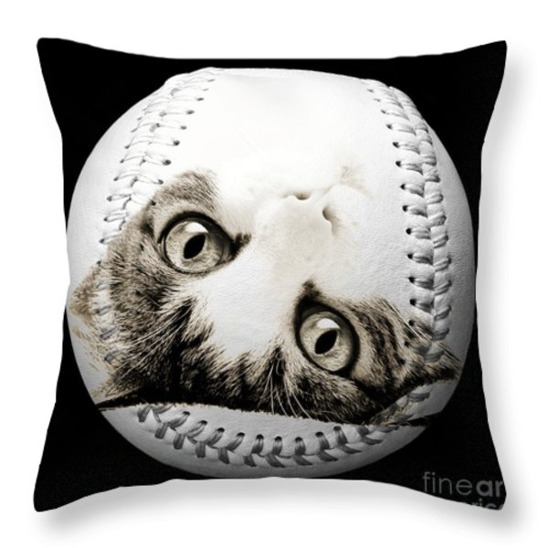 Grand Kitty Cuteness Baseball Square B W Throw Pillow by Andee Design