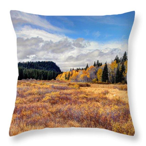 Grand Mesa Colors Throw Pillow by Bob Hislop
