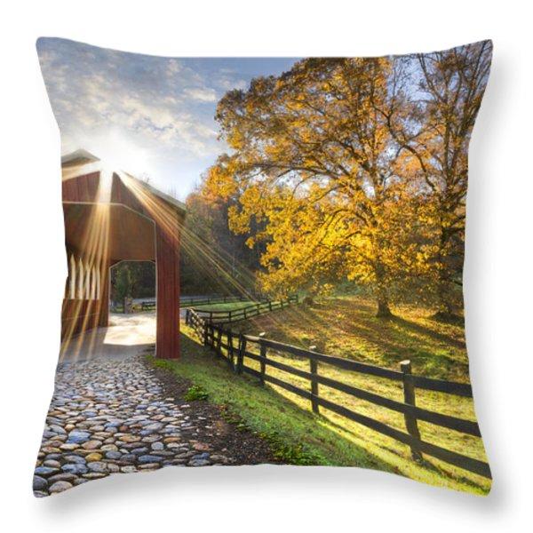 Granny Squirrel Bridge Throw Pillow by Debra and Dave Vanderlaan