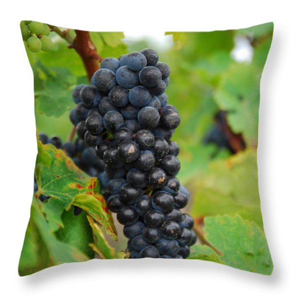 grapes Throw Pillow by Hannes Cmarits