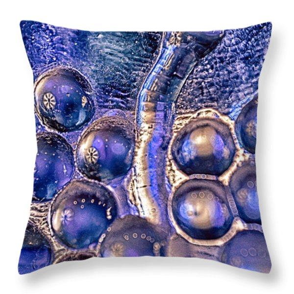 Grapes Of Glass Part 2 Throw Pillow by Omaste Witkowski