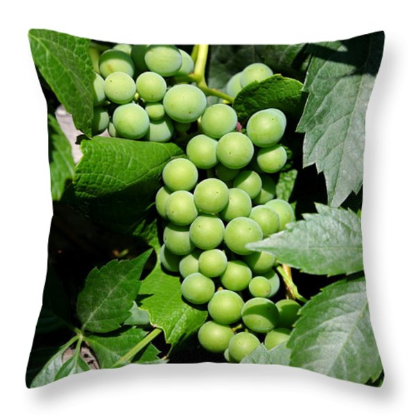 Grapes on the Vine Throw Pillow by Carol Groenen