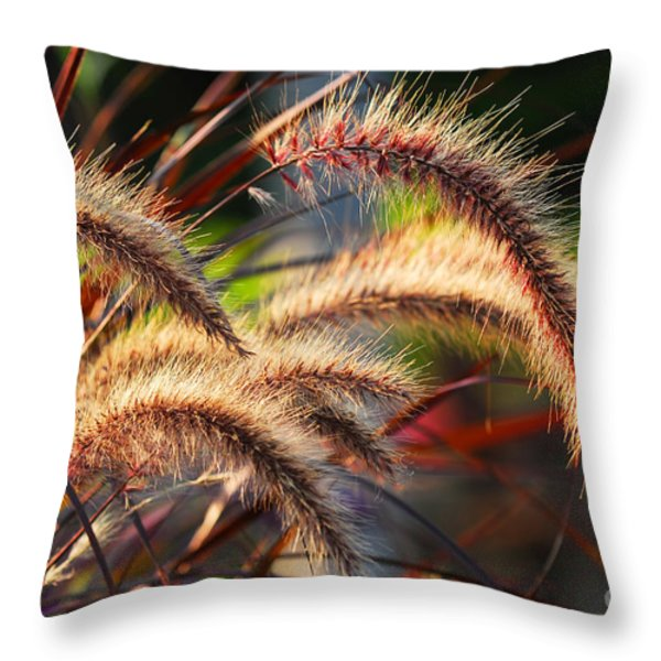 Grass ears Throw Pillow by Elena Elisseeva