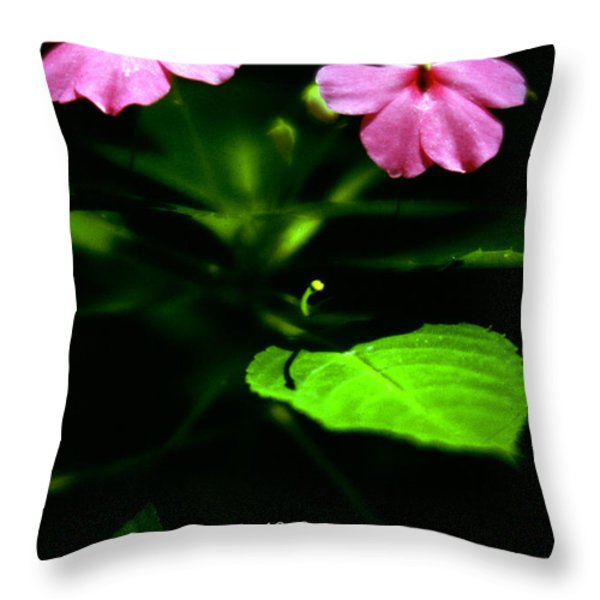Grass Withers Flowers Fade Throw Pillow by Thomas R Fletcher