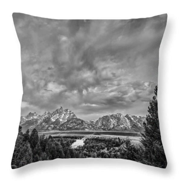 Gray Treetons Throw Pillow by Jon Glaser