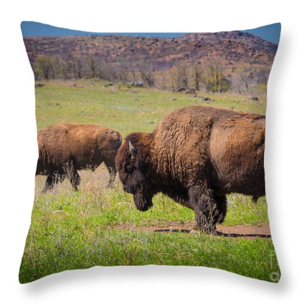 Grazing Bison Throw Pillow by Inge Johnsson