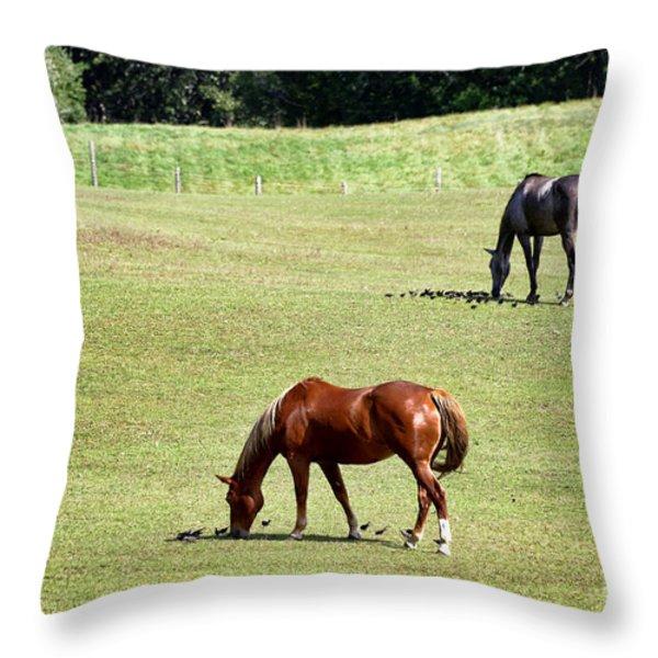 Grazing Horses Throw Pillow by John Greim