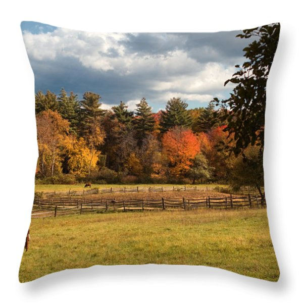 Grazing on the Farm Throw Pillow by Joann Vitali