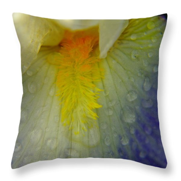 GREAT BEAUTY IN TINY PLACES Throw Pillow by Jeff  Swan