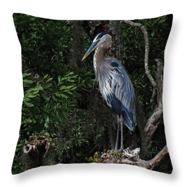 Great Blue Heron  Throw Pillow by Deborah Smith