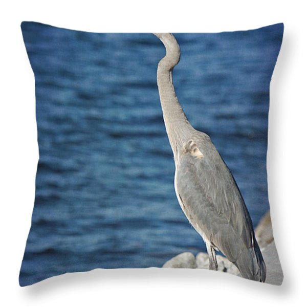 Great Blue Heron Throw Pillow by Joan McCool