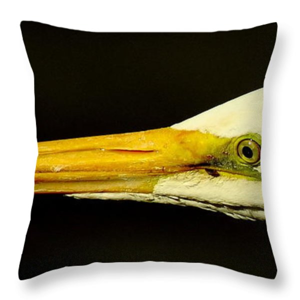 Great Egret Head Throw Pillow by Robert Frederick
