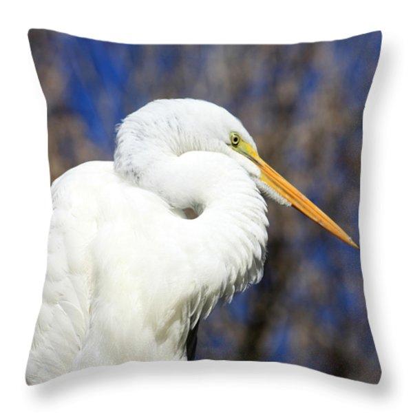 Great Egret Sunning Throw Pillow by Dorothy Menera
