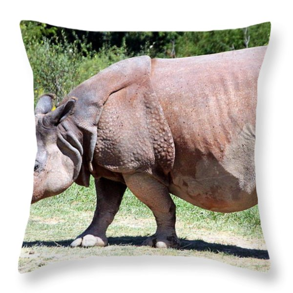 Greater One-Horned Asian Rhino Throw Pillow by Laurel Talabere