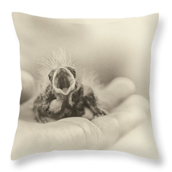 Greed Throw Pillow by Caitlyn  Grasso