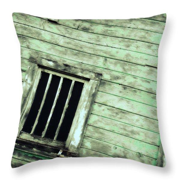 Green Barn Up Close Throw Pillow by Julie Hamilton