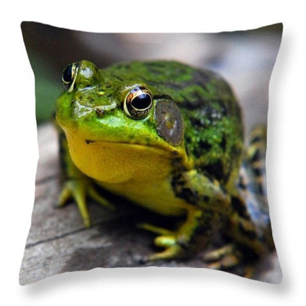 Green Envy Throw Pillow by Christina Rollo