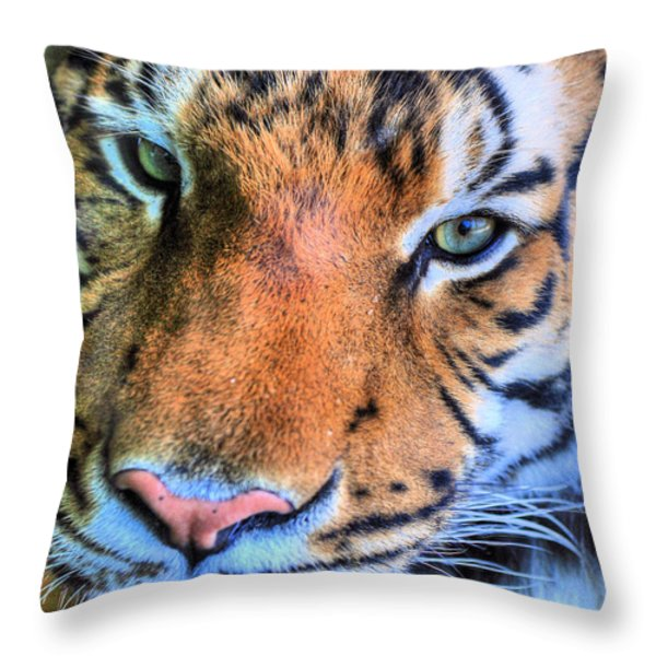 Green Eyed Redhead Throw Pillow by JC Findley